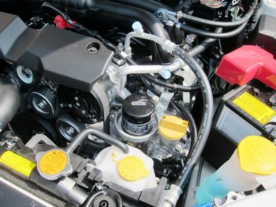 crossover7_engine2.JPG